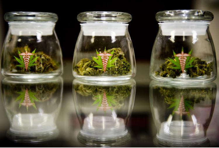 medical marijuana in jars