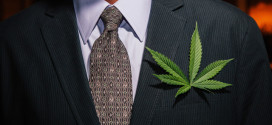 Business man with marijuana leaf on suit